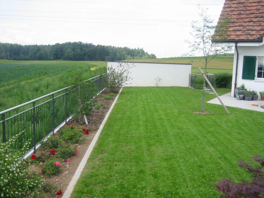 Gartenum nderung von steiner h rlimann gartenbau freudwil for Rollrasen anlegen